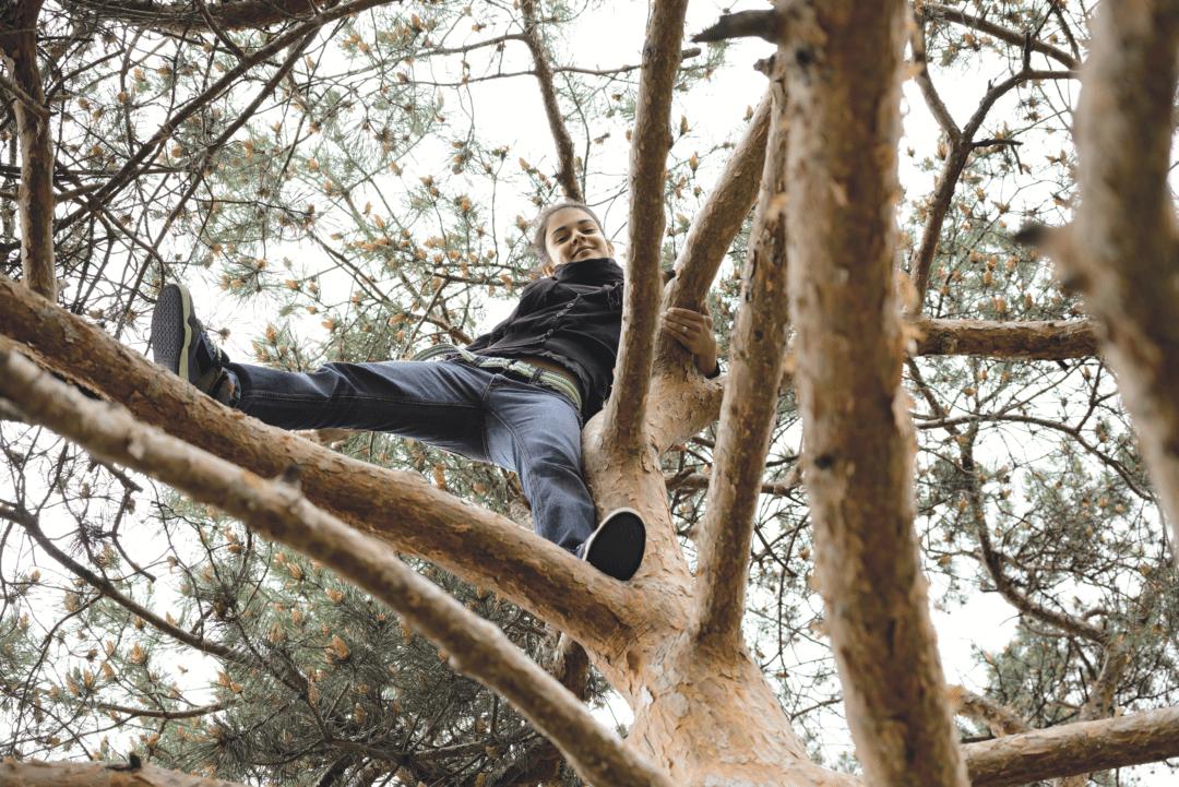 Pige i træ