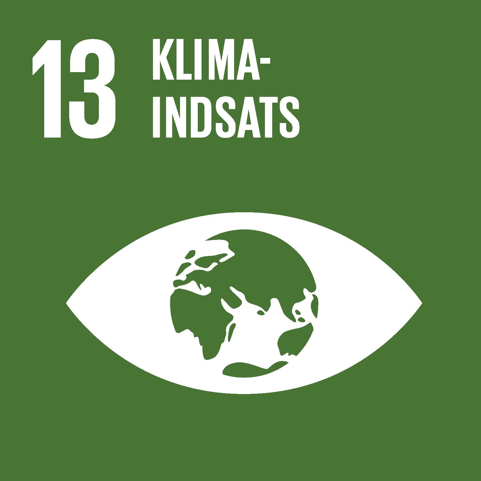 Verdensmål 13